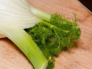 Fenchel für einen Salat